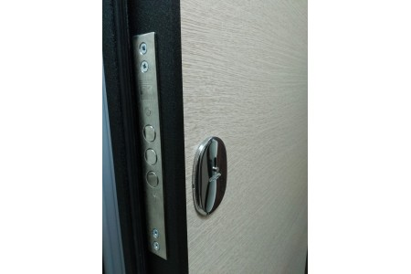 Тамбурная дверь в дом ул. Беды